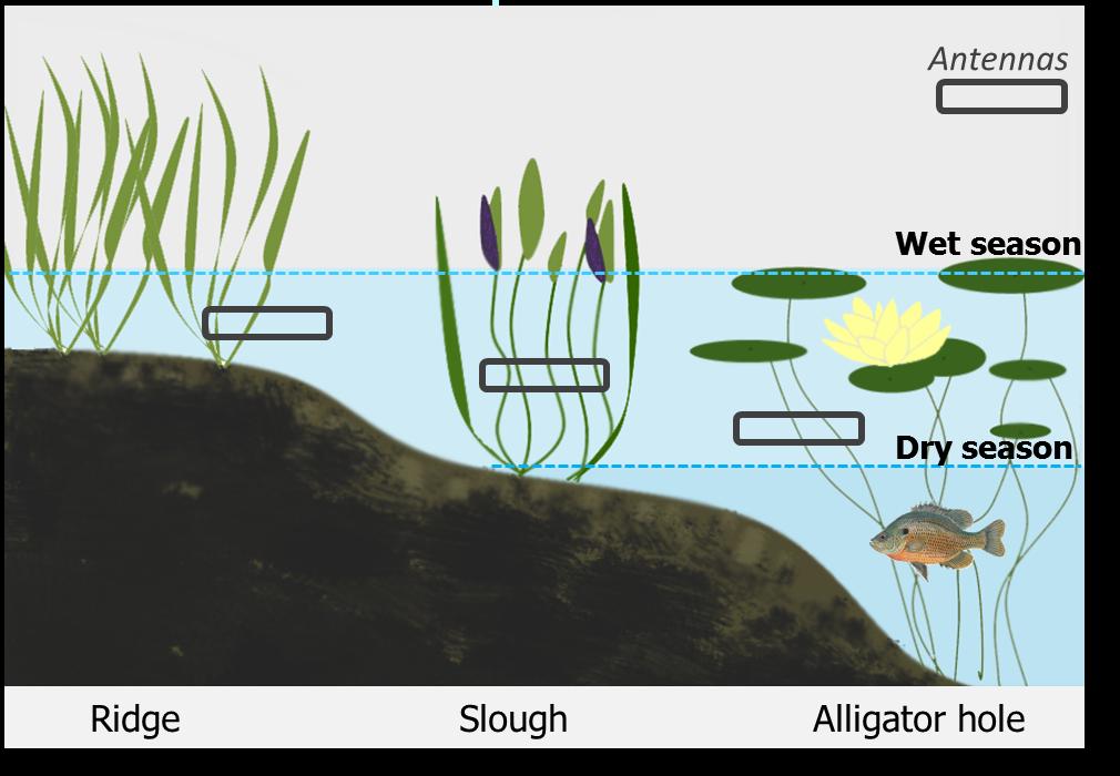 lila 3 habitats schematic